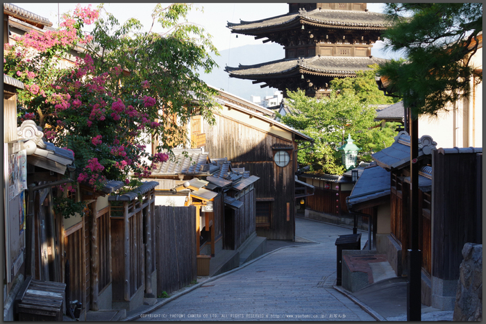 京都,東山(K70_0814,55-mm,F8,iso400)2016yaotomi_T.jpg