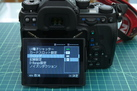 DSC_0015_s.jpg