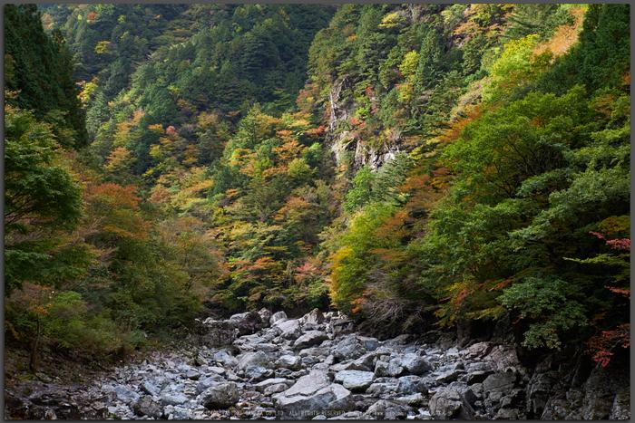 天川,みたらい渓谷(PK1_2673,48-mm,F7.1)2016yaotomi_T.jpg