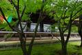 粟生光明寺,紅葉前(2K0A5014FL,12 mm,F6.3,iso500)2016yaotomi.jpg
