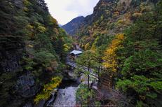 奈良天川,みたらい紅葉(SDQ_3176b,8 mm,F8)2016yaotomi.jpg