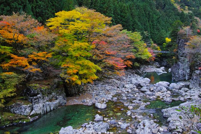奈良天川,みたらい紅葉(SDQ_3183b,21 mm,F8)2016yaotomi.jpg