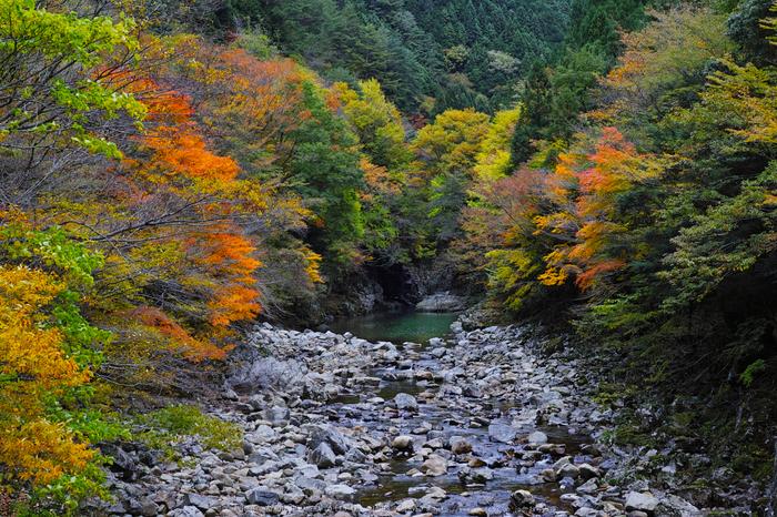 奈良天川,みたらい紅葉(SDQ_3192b,35 mm,F8)2016yaotomi.jpg