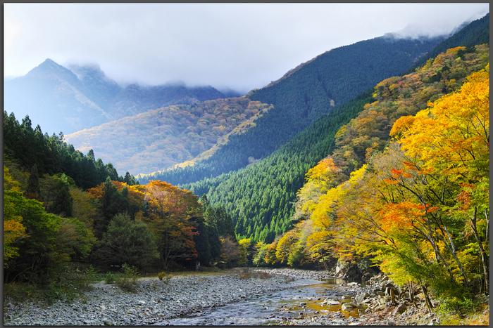 奈良天川,みたらい紅葉(SDQ_3217b,25-mm,F8)2016yaotomi_T.jpg