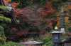 岡寺(PB230015,47 mm,F6.3,iso200)2016yaotomi.jpg