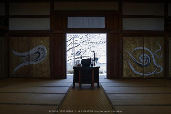 SDQH0611,jyousyoukouji,2017yaotomi.jpg