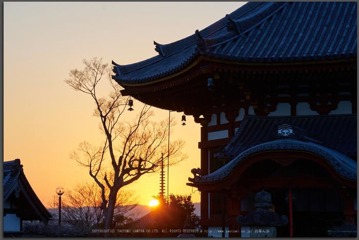 室生寺雪景,DSC_0088,2017yaotomi_T.jpg