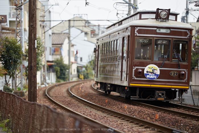 車折神社の桜_IMG_7002,2017yaotomi.jpg
