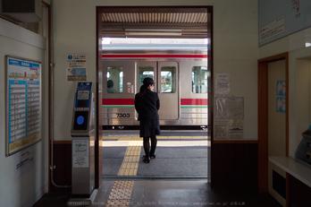 高松紀行,Lumix,GH5_P3190192,2017yaotomi.jpg