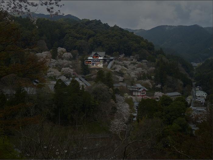 初瀬長谷寺,桜_CF015053,2017yaotomi_s.jpg