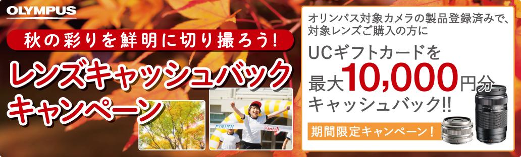 秋の彩りを鮮明に切り撮ろう!レンズキャッシュバックキャンペーン