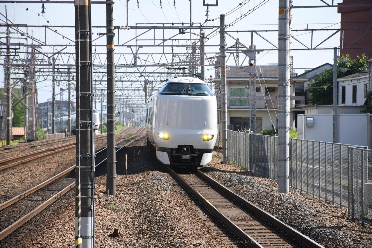 https://www.yaotomi.co.jp/blog/walk/DSC_0088%2C2017yaotomi.jpg