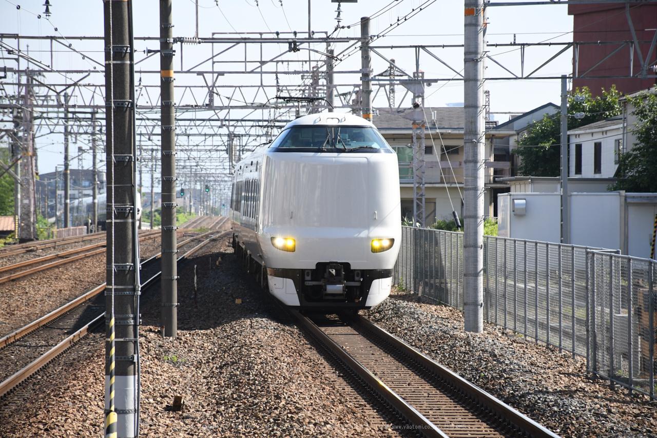 https://www.yaotomi.co.jp/blog/walk/DSC_0105b%2C2017yaotomi.jpg
