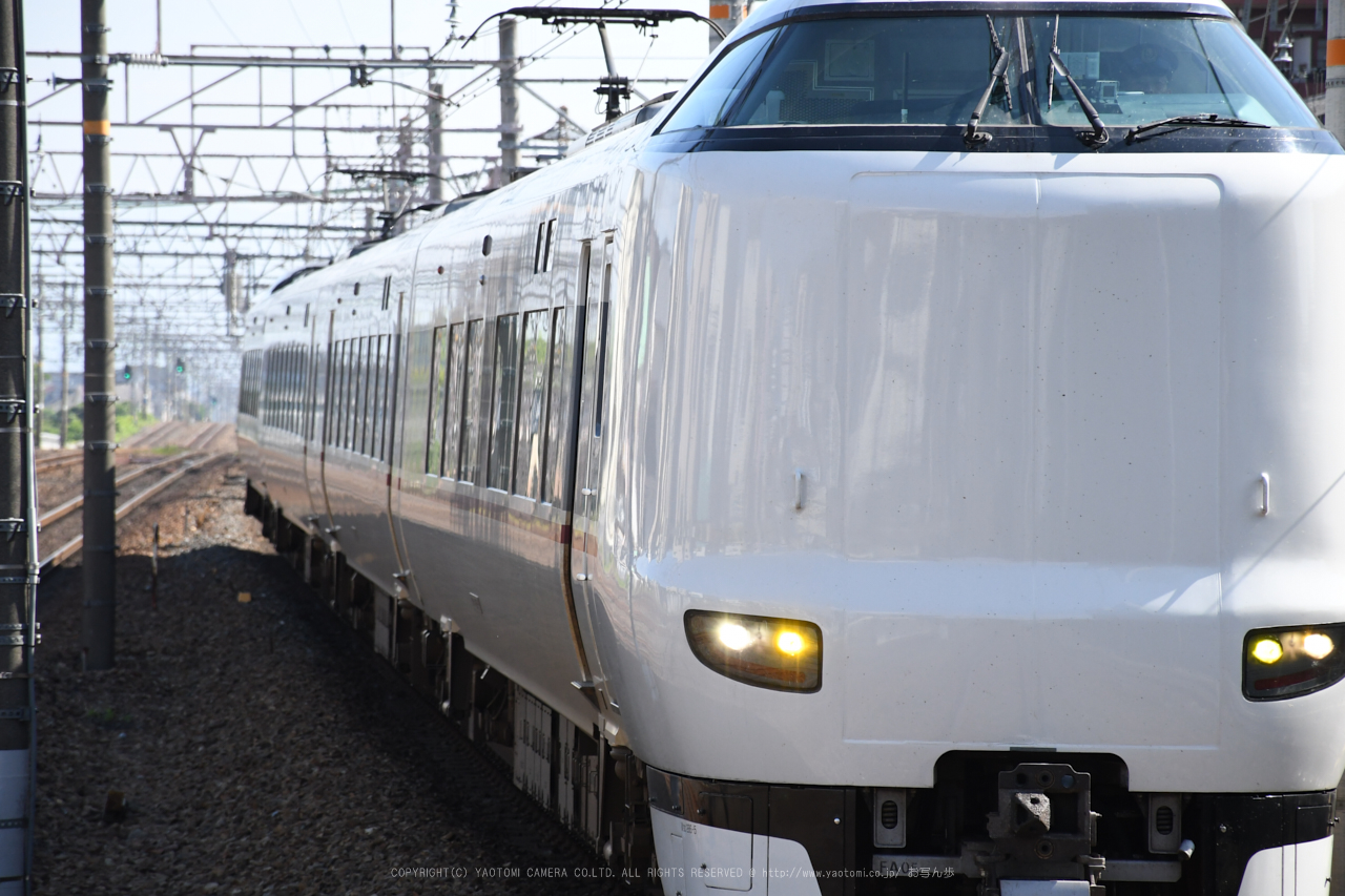 https://www.yaotomi.co.jp/blog/walk/DSC_0143%2C2017yaotomi.jpg