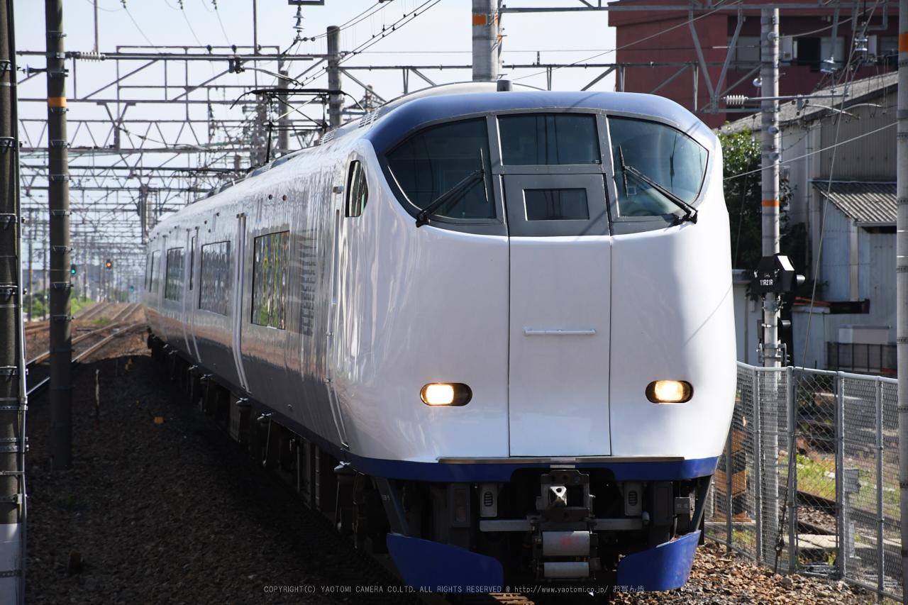 https://www.yaotomi.co.jp/blog/walk/DSC_0230%2C2017yaotomi.jpg