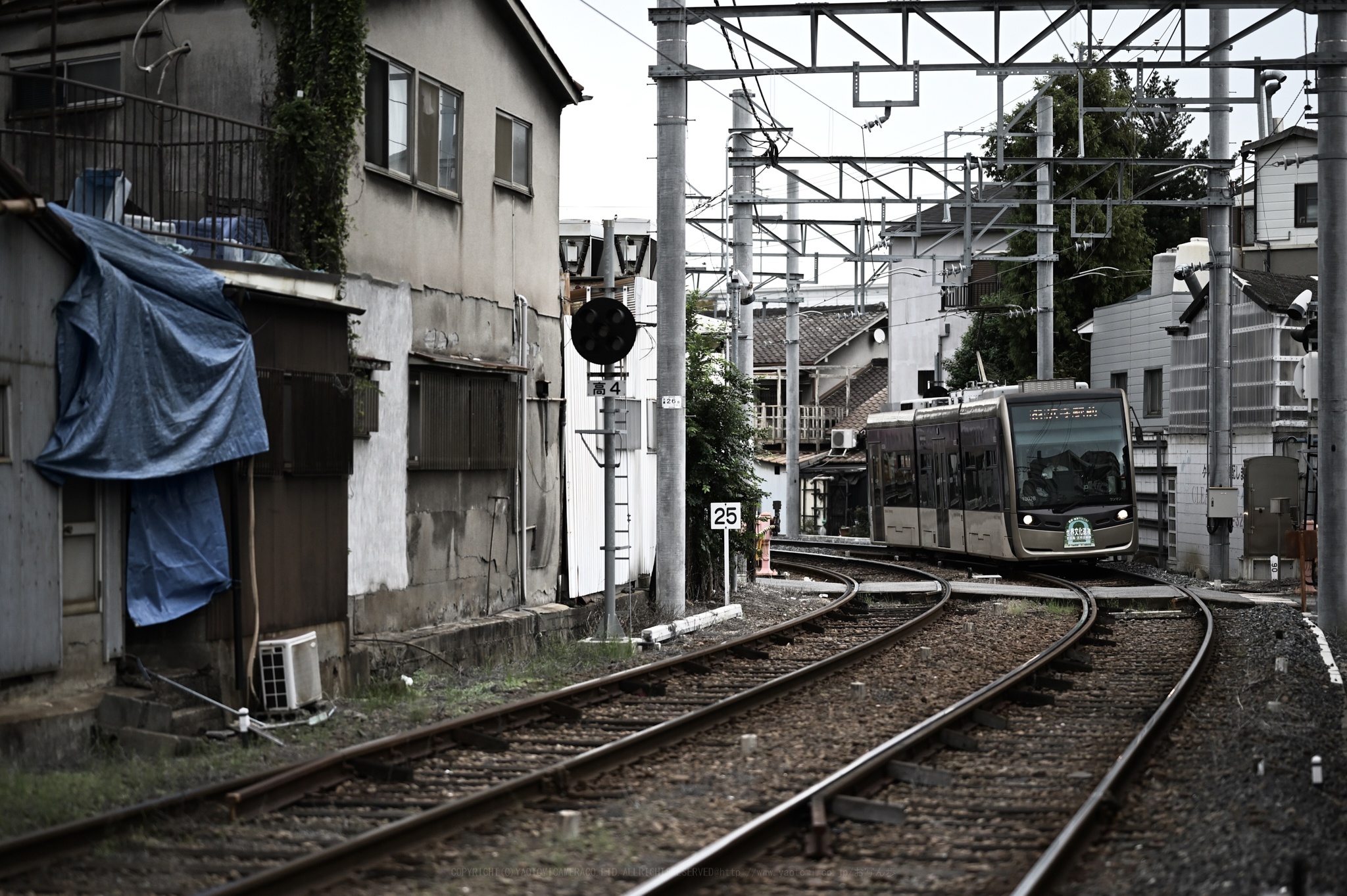 https://www.yaotomi.co.jp/blog/walk/DSC_0689_85mm%2CF1.8%2Ciso640-1.jpg
