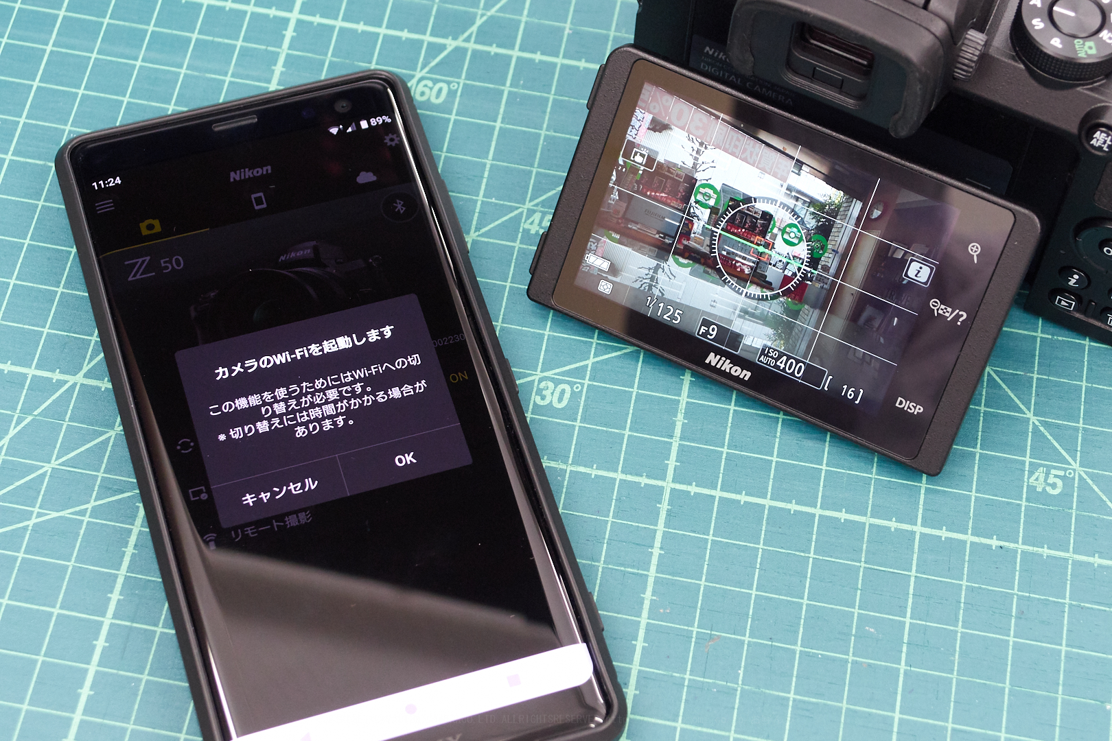 https://www.yaotomi.co.jp/blog/walk/Nikon50_21.jpg