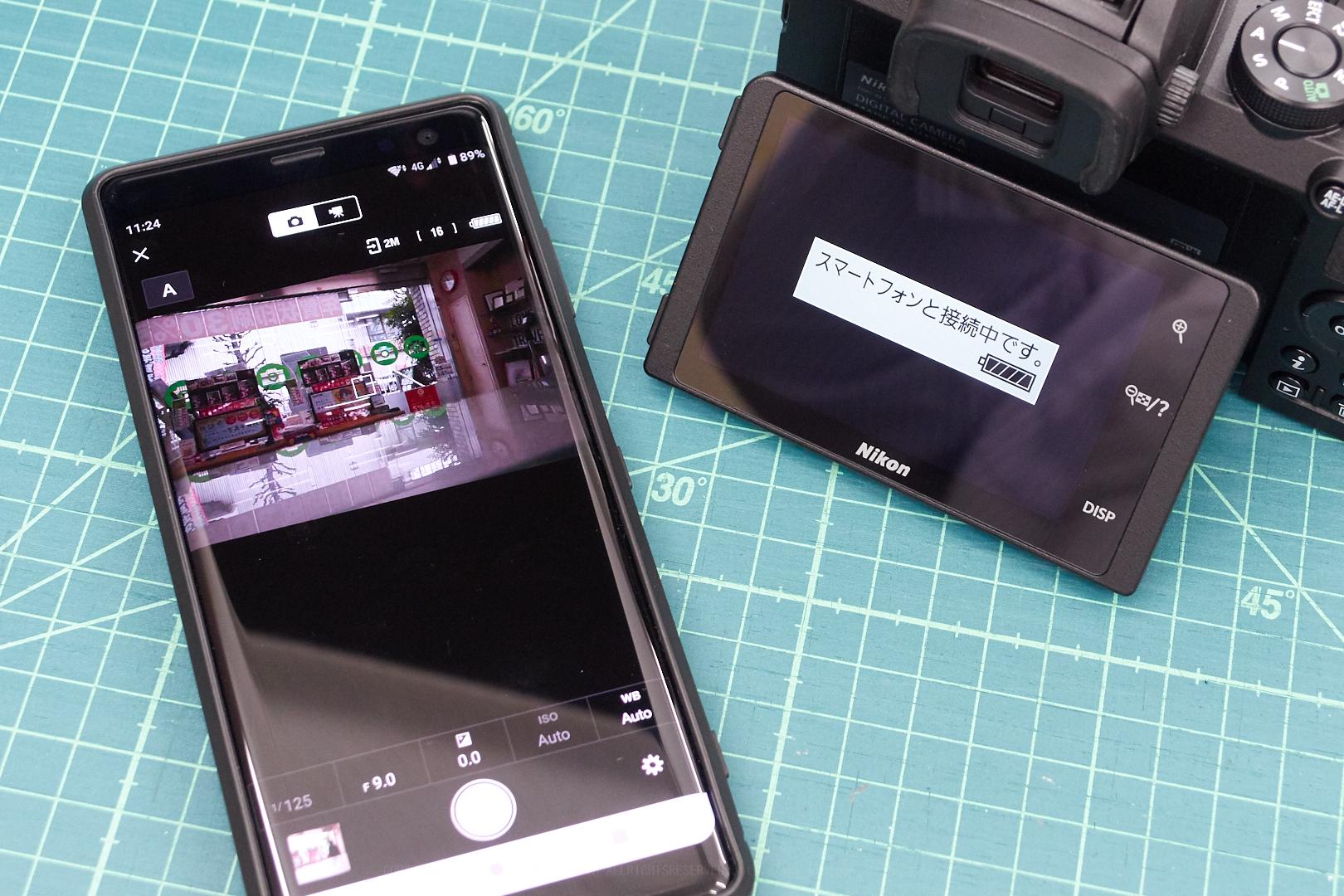 https://www.yaotomi.co.jp/blog/walk/Nikon50_23.jpg