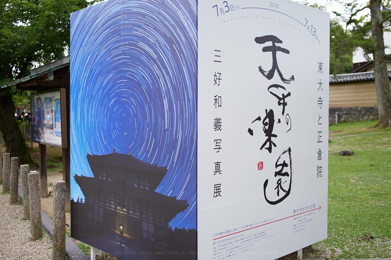 https://www.yaotomi.co.jp/blog/walk/P7040023_17%20mm%28F1.2%29iso200_2018yaotomi.jpg