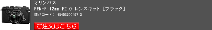 PEN-F(ボディ,B,12キット)2016yaotomi.jpg