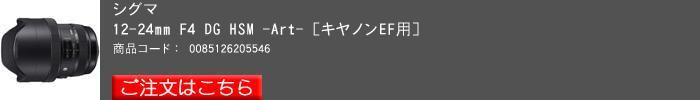 SIGMA,12_24F4Art,2016yaotomi,C.jpg