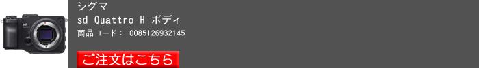 SIGMA-sd-Quattro-H_2016yaotomi(01).jpg