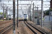 DSC_0054,2017yaotomi.jpg