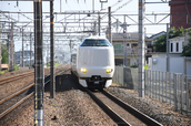DSC_0099,2017yaotomi.jpg