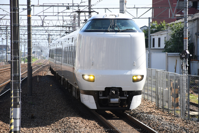 DSC_0130,2017yaotomi.jpg