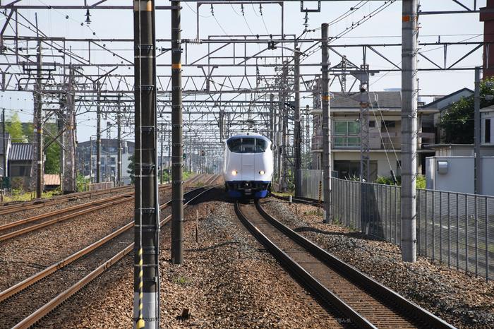 DSC_0199,2017yaotomi.jpg
