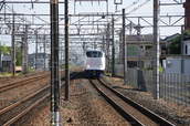 DSC_0203,2017yaotomi.jpg