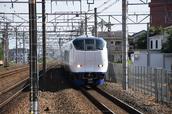 DSC_0221,2017yaotomi.jpg