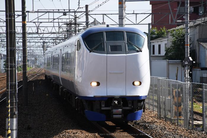 DSC_0228,2017yaotomi.jpg