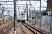 DSC_0325,2017yaotomi.jpg