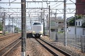 DSC_0327,2017yaotomi.jpg