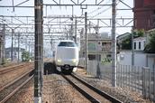 DSC_0331,2017yaotomi.jpg