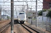 DSC_0333,2017yaotomi.jpg
