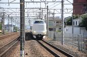 DSC_0334,2017yaotomi.jpg