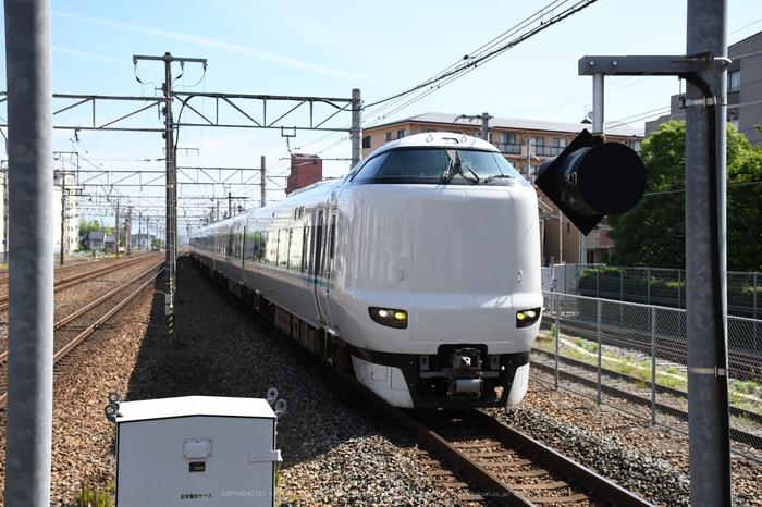 DSC_0356,2017yaotomi.jpg