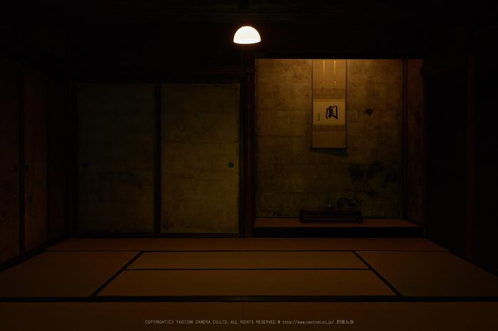 P5310855,2017yaotomi 1.jpg