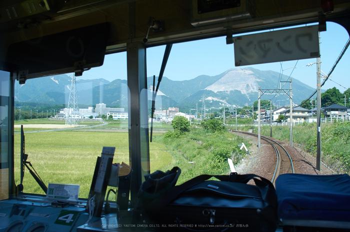 PKP_3913,2017yaotomi.jpg