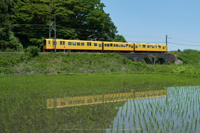 PKP_4026,2017yaotomi.jpg