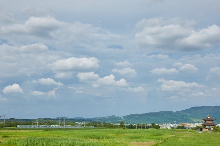 IMG_0103,53 mm_2017yaotomi.jpg