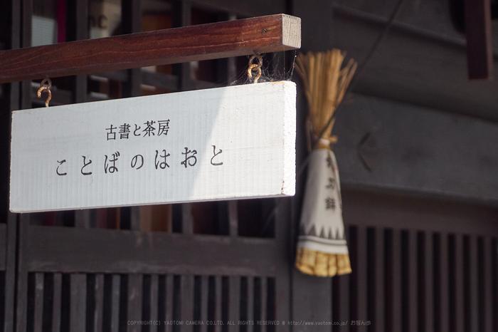 P7160437,21 mm_2017yaotomi.jpg