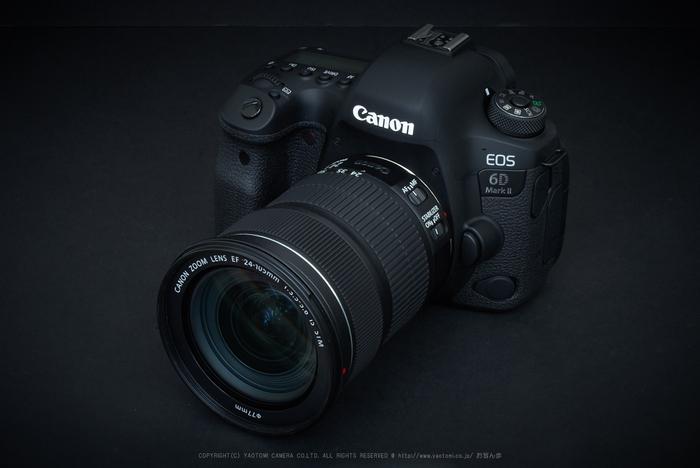 CanonEOS6DMarkII_2017yaotomi_07.jpg