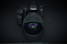 CanonEOS6DMarkII_2017yaotomi_16.jpg