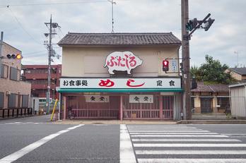 P8020384 (2),9 mm_2017yaotomi.jpg