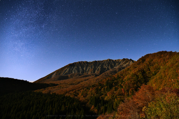DSC_7130,24 mm,17-11-01_yaotomi.jpg