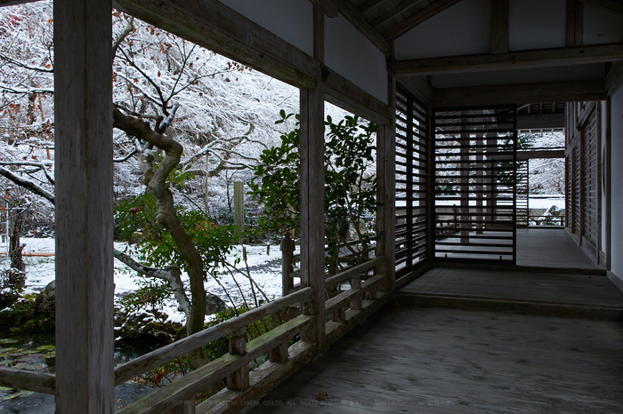 PC090080,17 mm7.1_yaotomi 1.jpg
