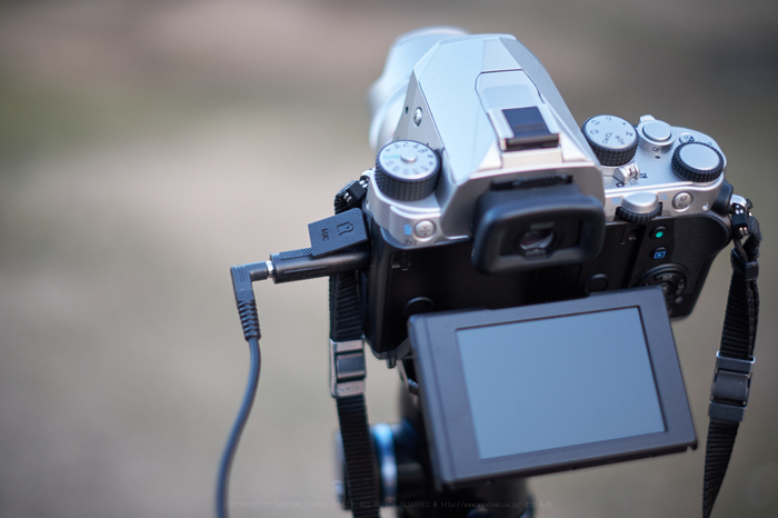 XT2F9451,35 mm(960)_2018yaotomi.jpg